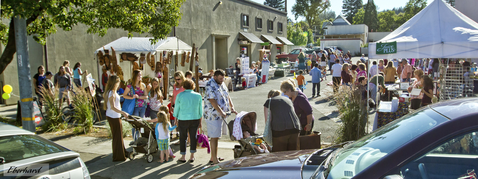 Downtown Market in Willits California