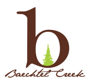 bechtel_creek_vector